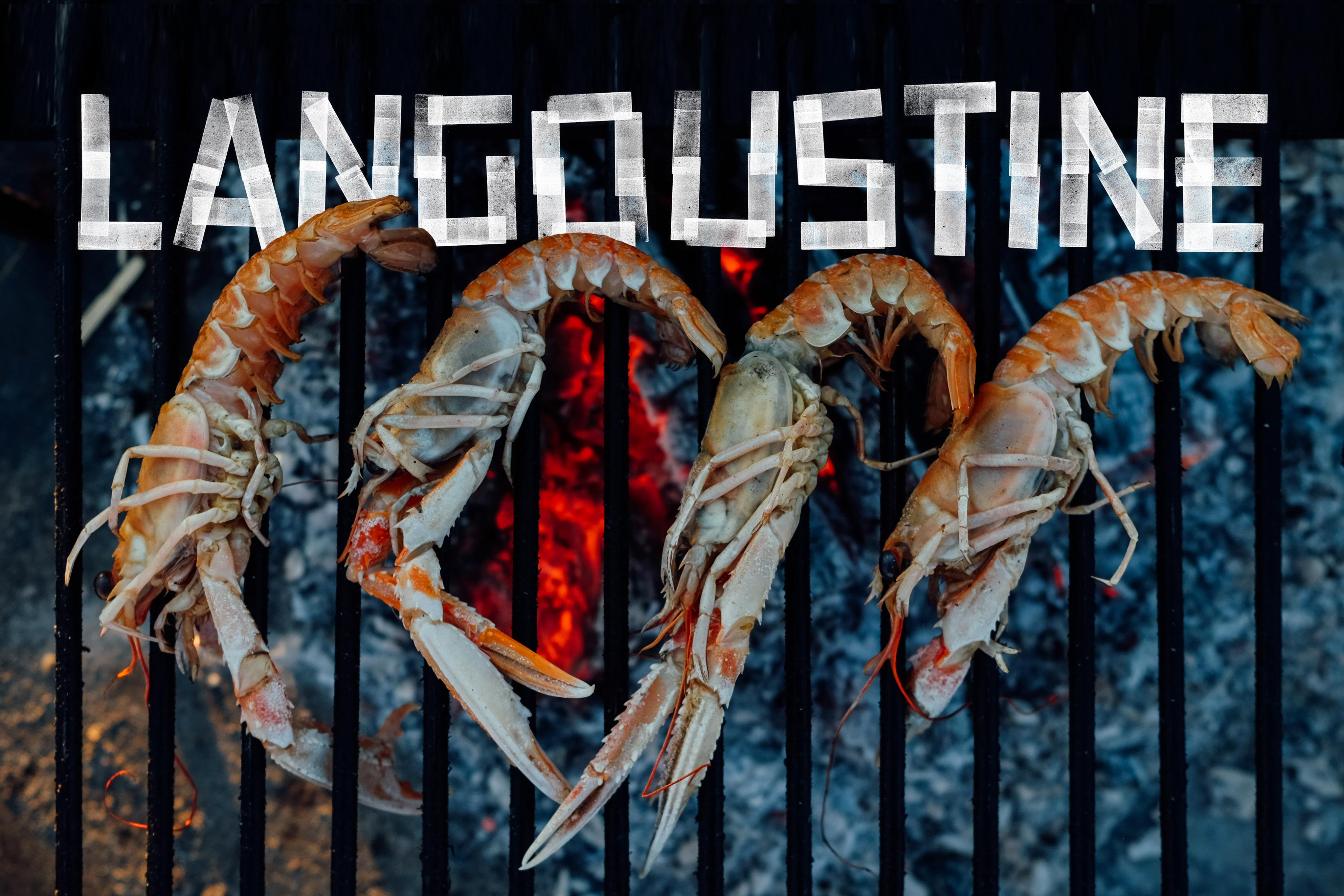 The Two Anchors Seafood Fish Brand Graphic Design Photography Shellfish Logo Ogmore-by-Sea Wales Langoustine Jonathan White Phill Lewis